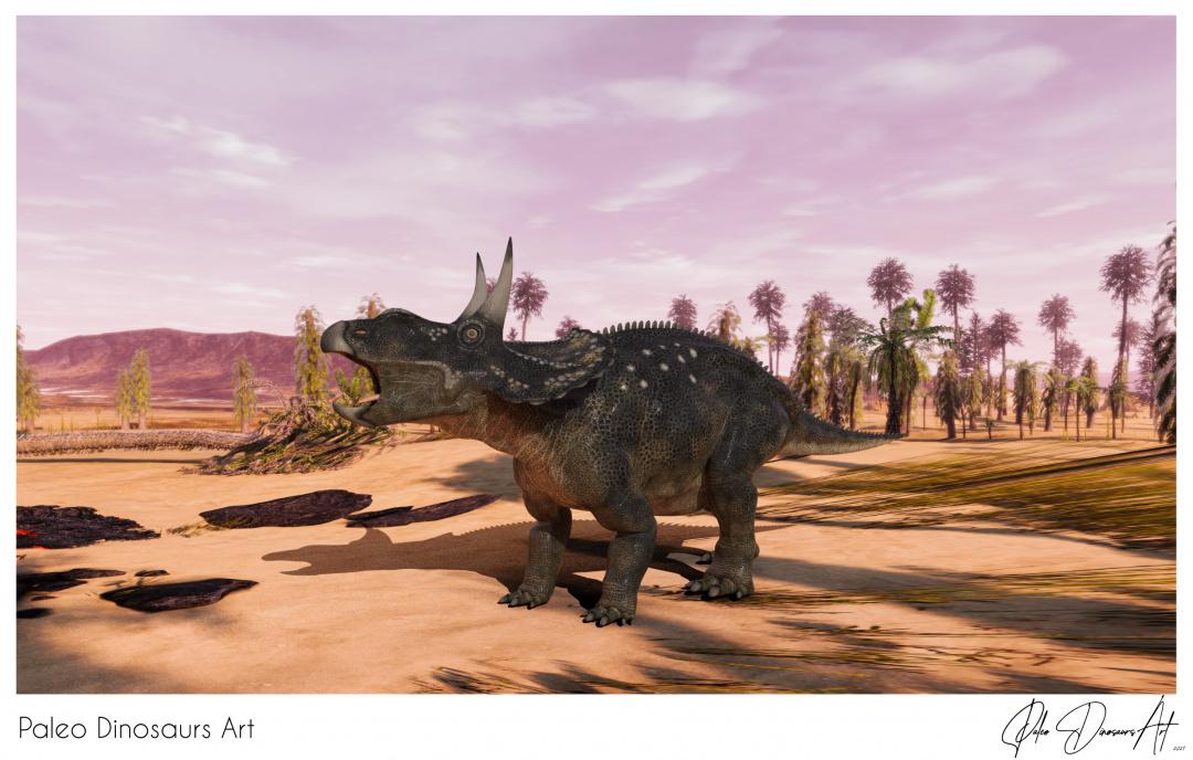 Paleo Dinosaurs Art presents: Diceratops