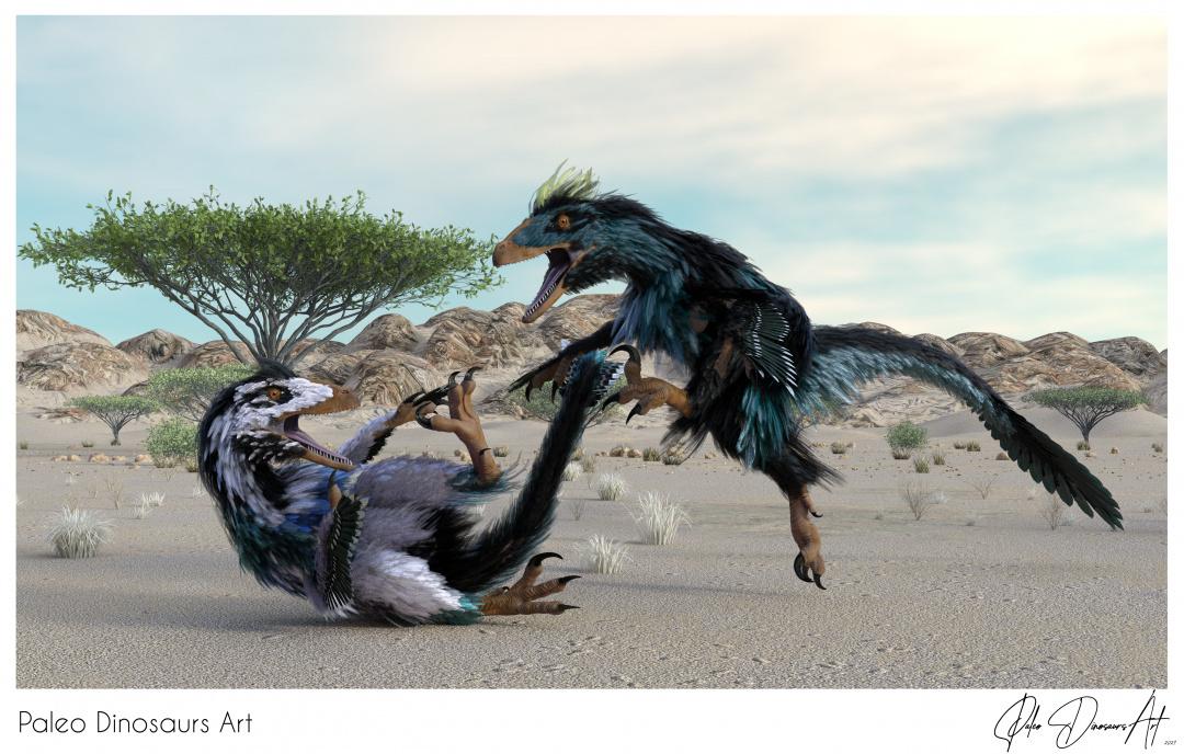 Paleo Dinosaurs Art presents: Deinonychus Feathered Dinosaurs
