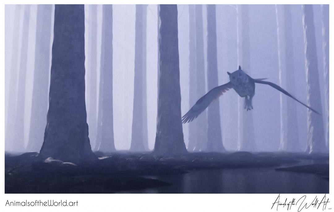 Animals of the World Art presents: Western Screech-Owl