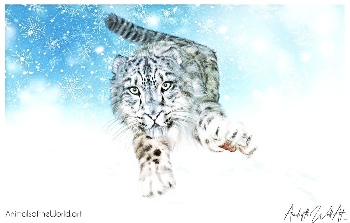 Animals of the World Art presents Snow Leopard