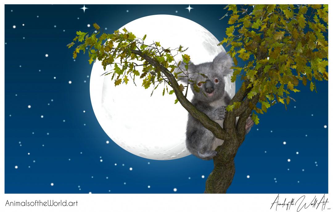 Animals of the World Art presents: Koala