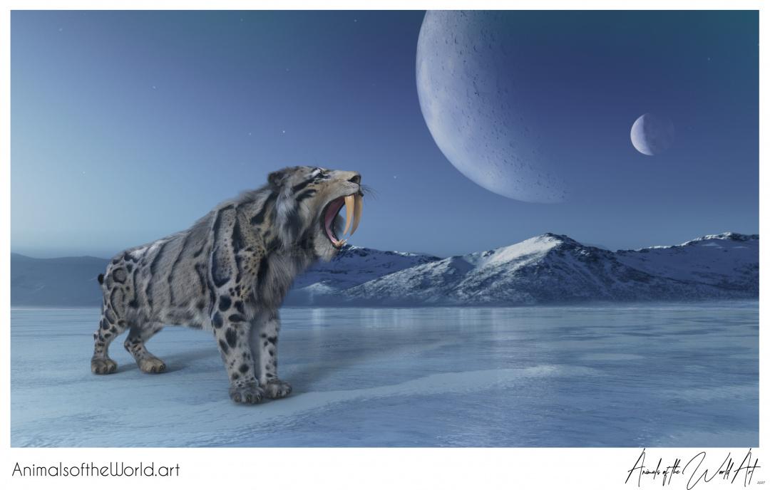 Animals of the World Art presents: Smilodon Sabertooth Tiger (extinct)