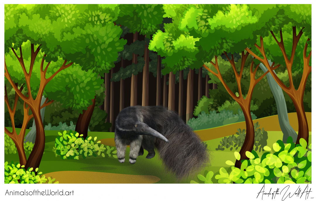Animals of the World Art presents: Anteater