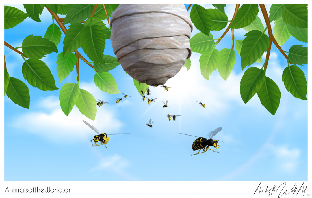 Animals of the World Art presents: Wasp Swarm and Nest