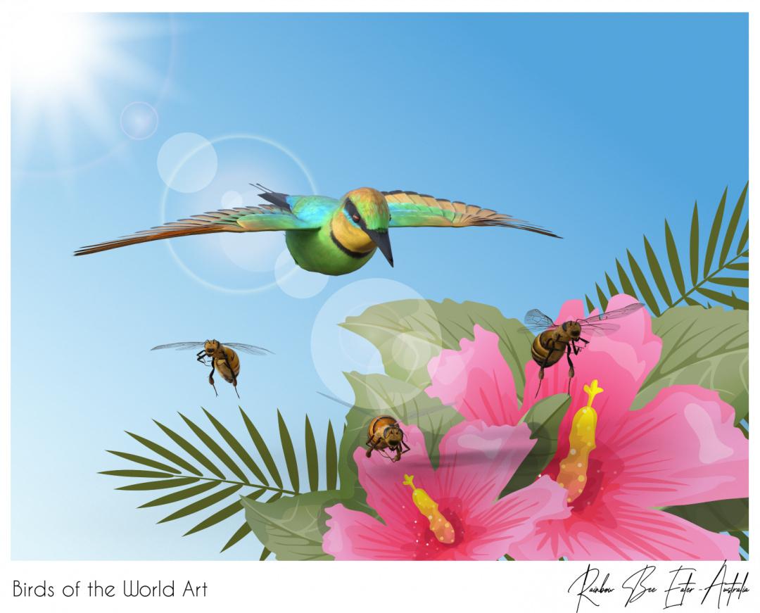Birds of the World Art presents: Rainbow Bee Eater from Australia