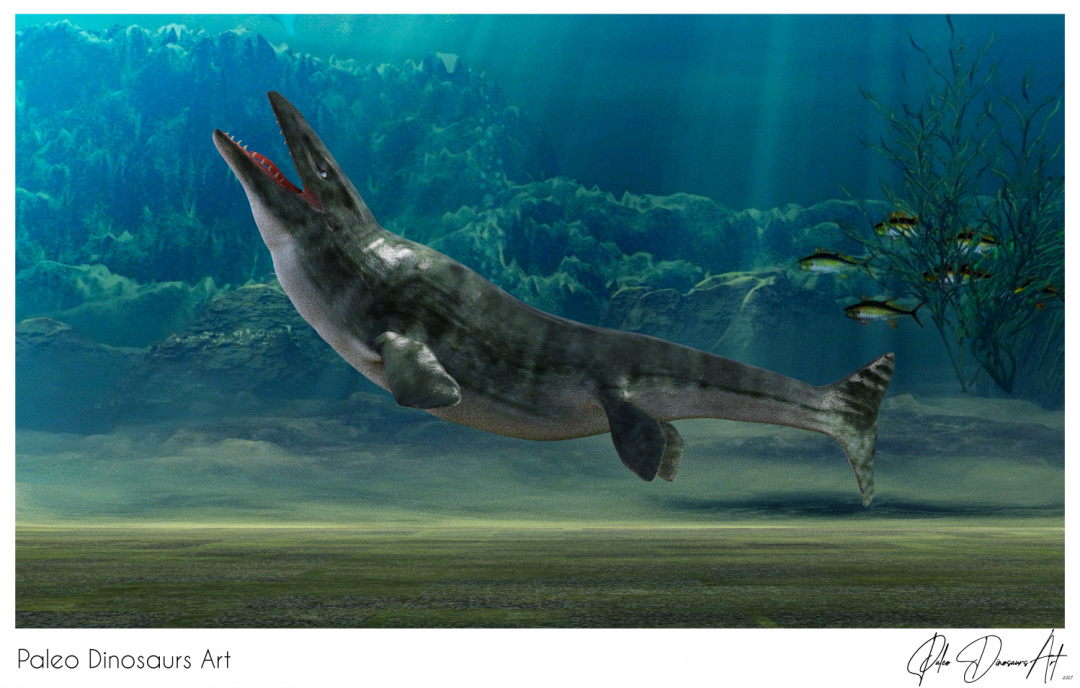 Paleo Dinosaurs Art presents: Mosasaur