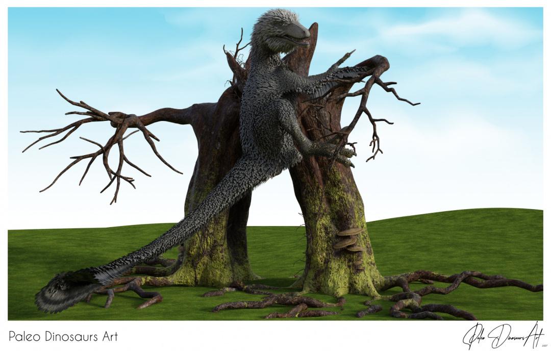 Paleo Dinosaurs Art presents: Dakotaraptor climbing tree