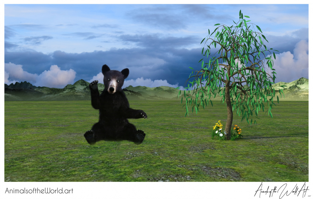 Animals of the World Art presents: Brown Bear