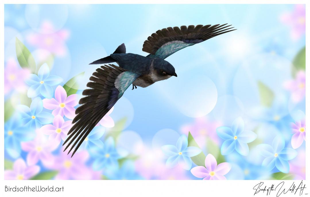 Birds of the World Art presents: Purple Martin Swallow