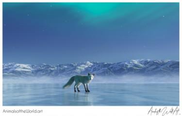 Animals of the World Art presents: Arctic Fox