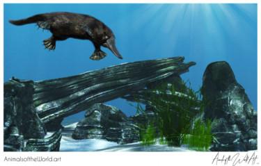 Animals of the World Art presents: Platypus