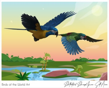 Birds of the World Art presents: Blue-throated and Blue-winged Macaw from South America